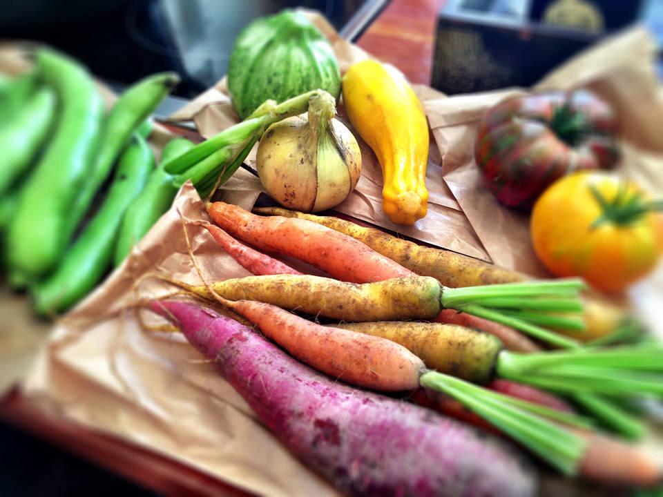 Grønnsaker fra Korsvold gård. Fargefest!
