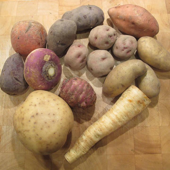 Rotfrukter: