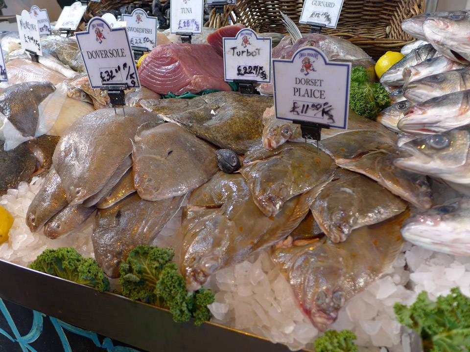 Fersk fisk.