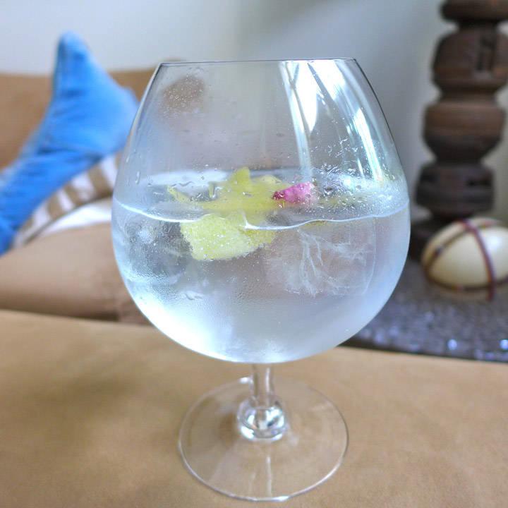 l1030676 - Gin & tonic er ikke bare gin & tonic