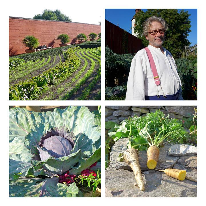 Gartner Simon Irvine har kontroll på den økologiske slottskjøkkenhagen. Grønnsakene blir servert i restaurant Hvita hjorten på hotellet Naturum, som ligger rett ved Läcko Slott.