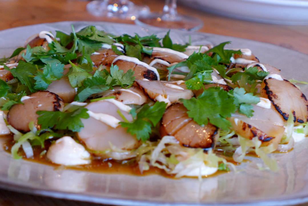 Lettgrillet kamskjellsashimi med misokrem, kål og asiatisk dressing.