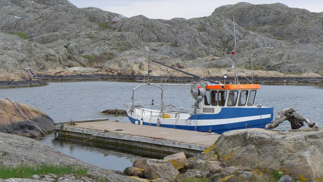 Fiskebåten Wilma.