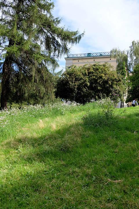 Skråningen nedenfor Slottet.