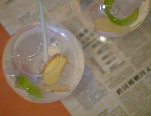 DSCF5810 520x400 - Asiatisk gin og tonic