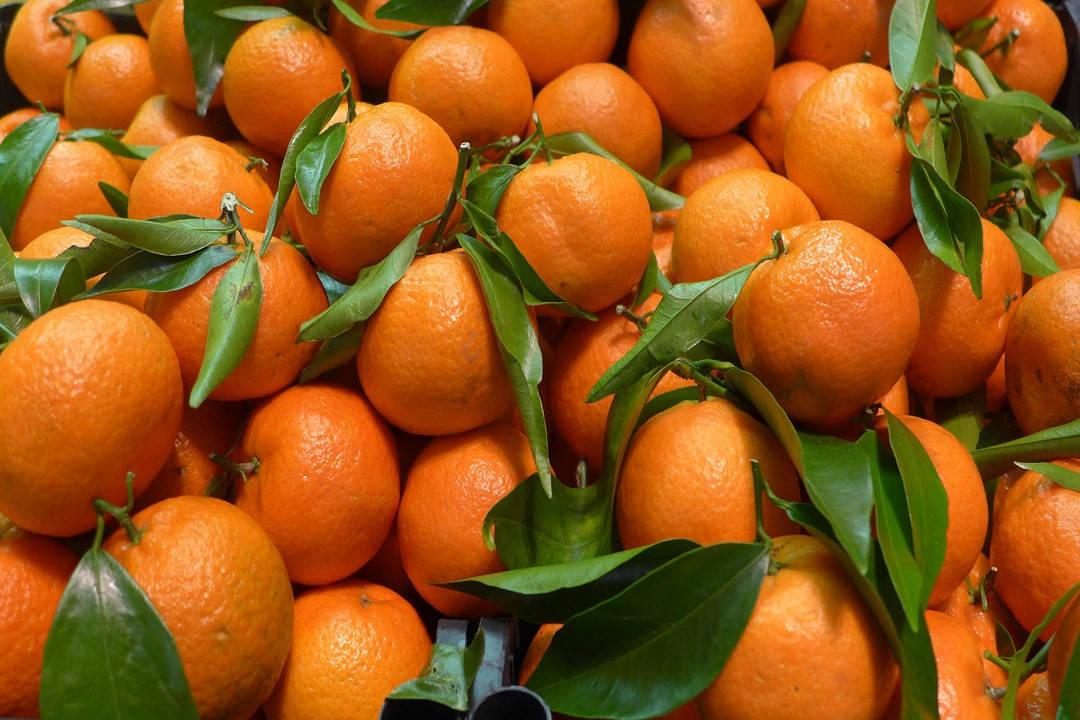 L1190789 1080x720 - Mandarin og klementin: Smaker jeg forskjellen?