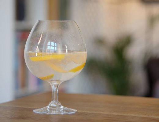 DSCF9649 520x400 - Mango – Gin & Tonicens beste venn