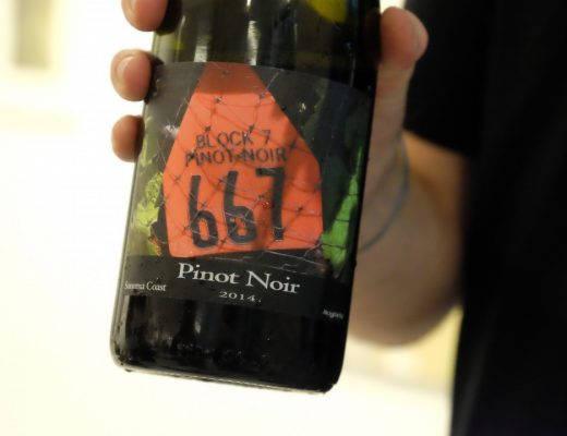 DSCF3008 520x400 - Sommerens vinfavoritter