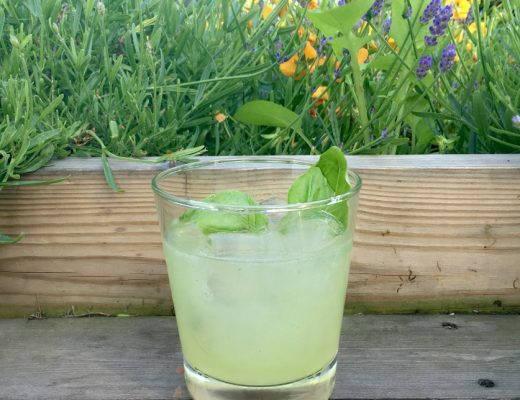 IMG 2092 520x400 - Basilikum i drinken er sykt godt!