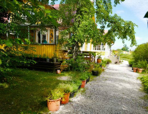 L1230996 520x400 - Kulinariske Gotland: Laidback og gourmet på Gula Hönan