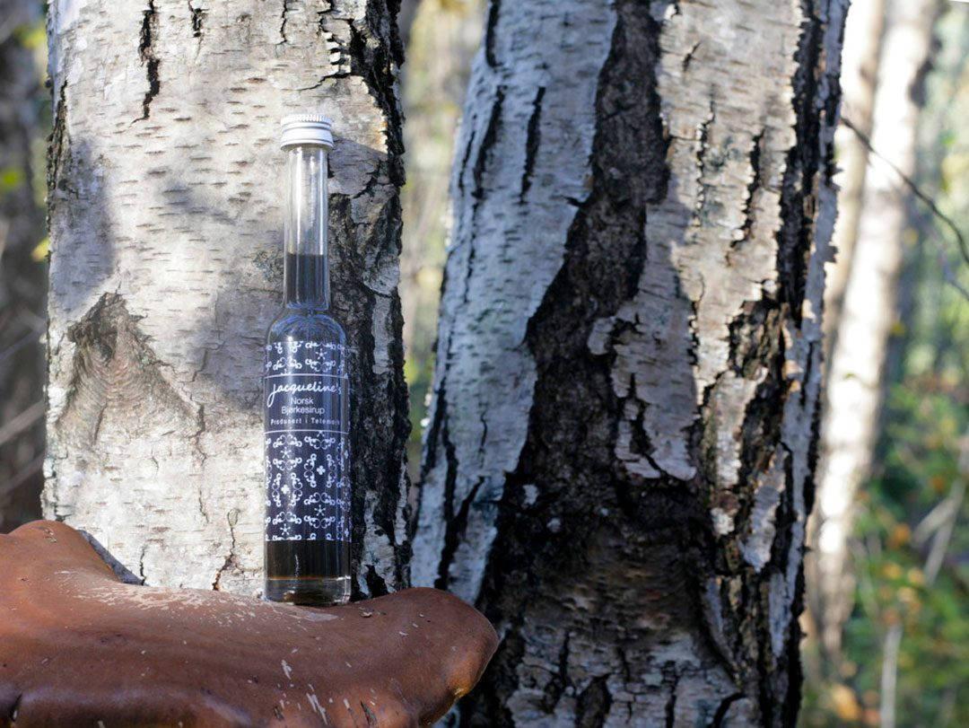 bottle in woods1 1080x811 - Norges første bjørkesirup