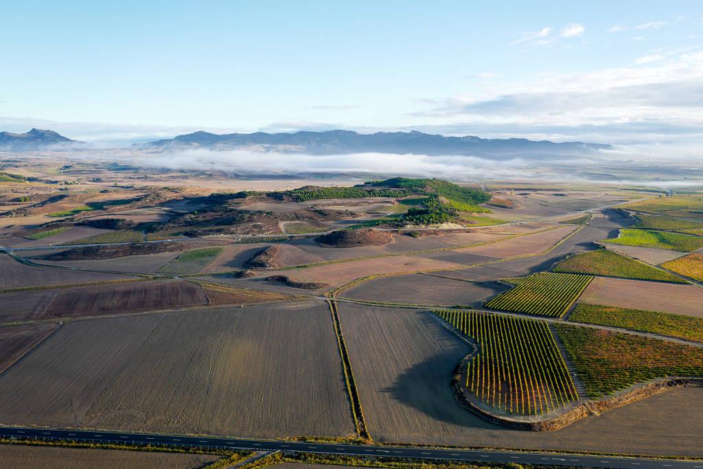 L1310499 - En vinrød tråd gjennom La Rioja
