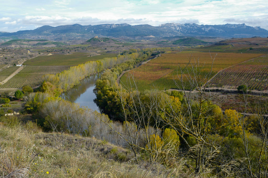 L1310871 - En vinrød tråd gjennom La Rioja