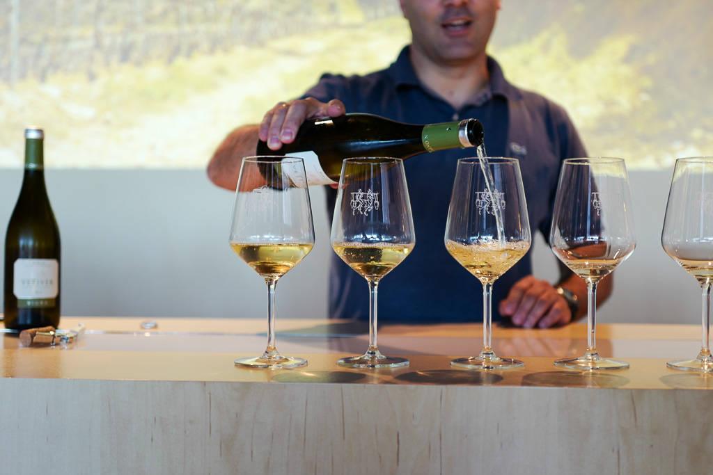 L1320270 - En vinrød tråd gjennom La Rioja