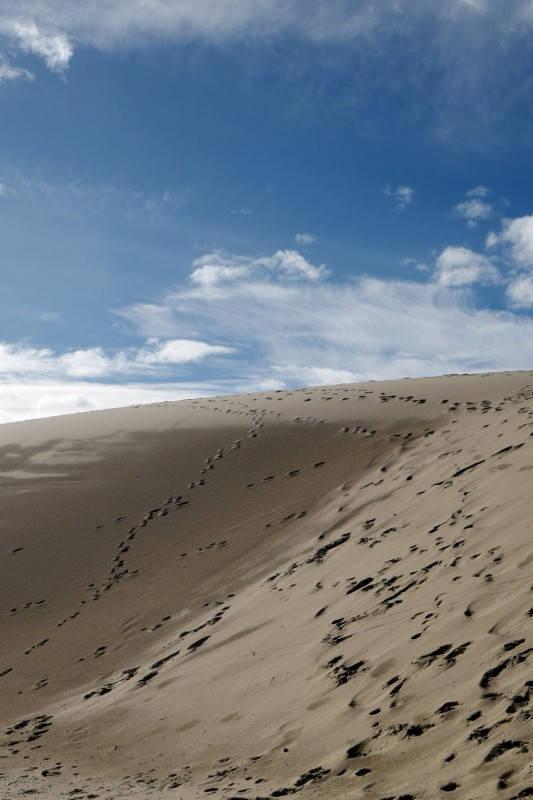 sandyner2 - Trøfler og vin, fjell og sjø i Oregon