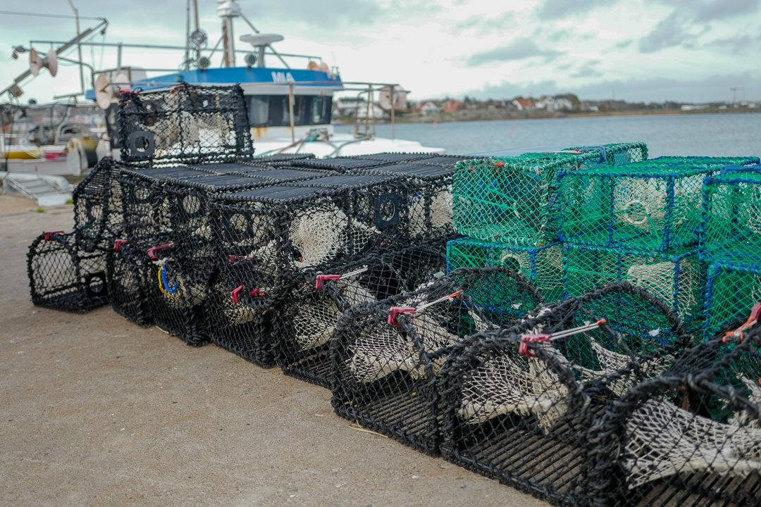 L1550555 1080x720 - På bærekraftig hummerfiske i Sverige