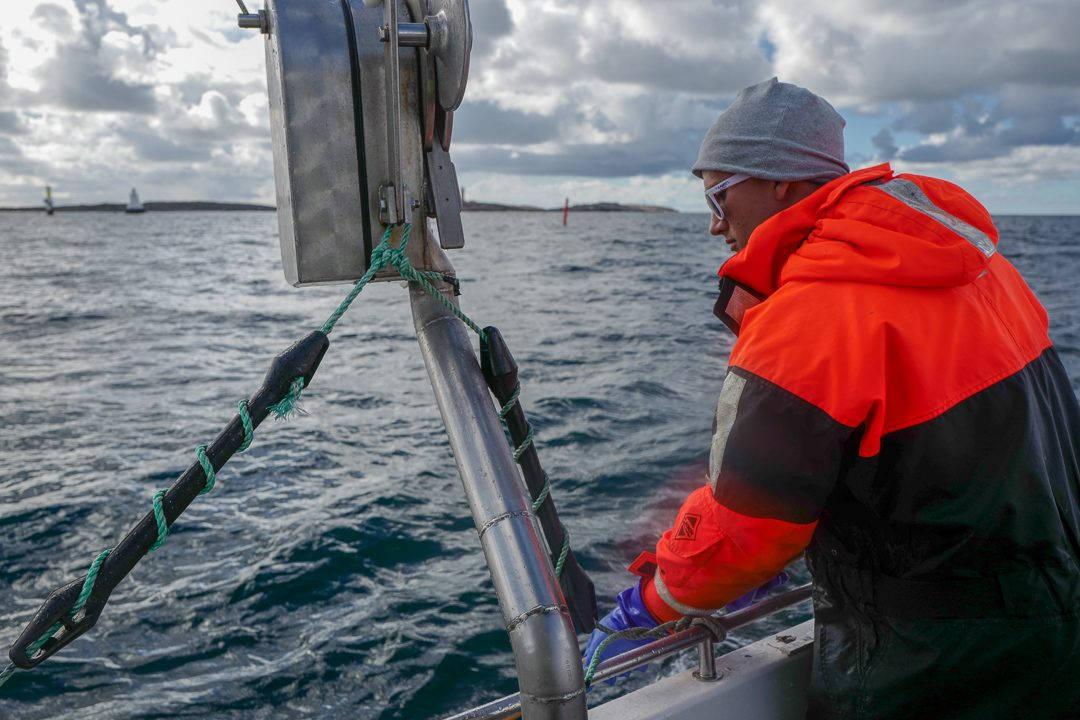 L1550717 1080x720 - På bærekraftig hummerfiske i Sverige