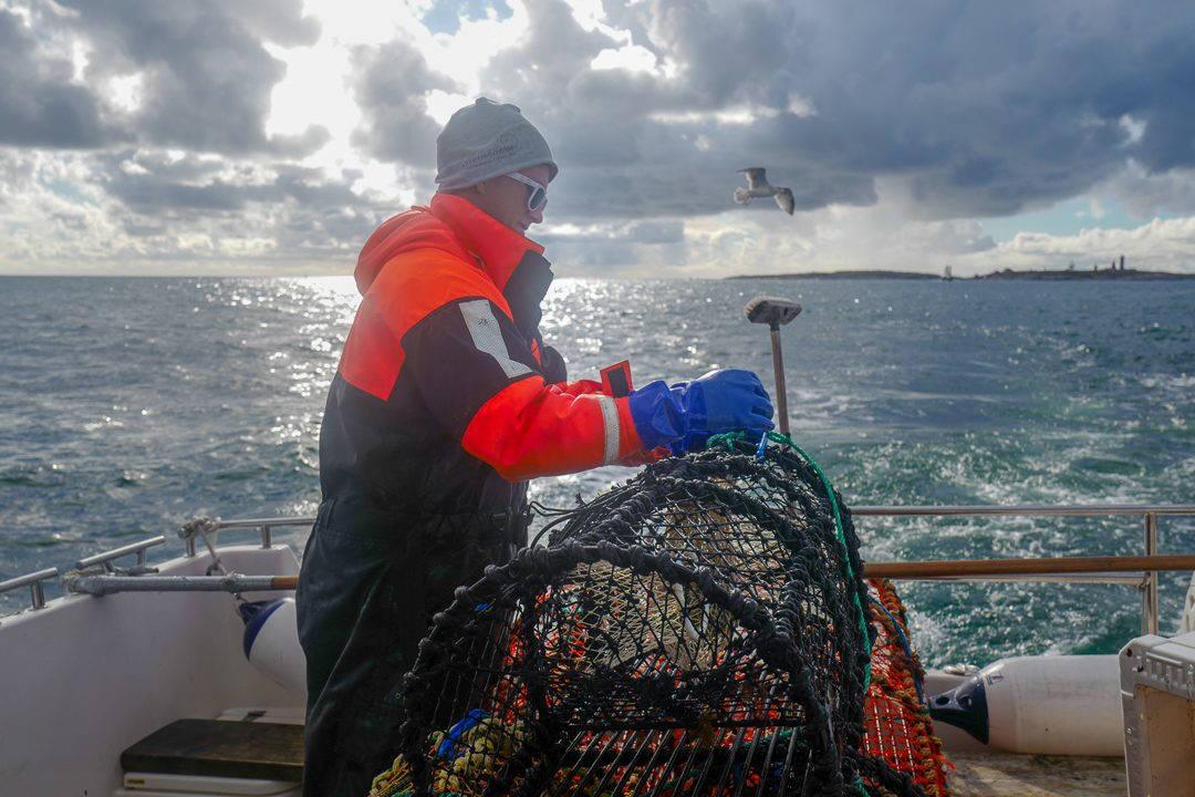 L1550751 1080x720 - På bærekraftig hummerfiske i Sverige