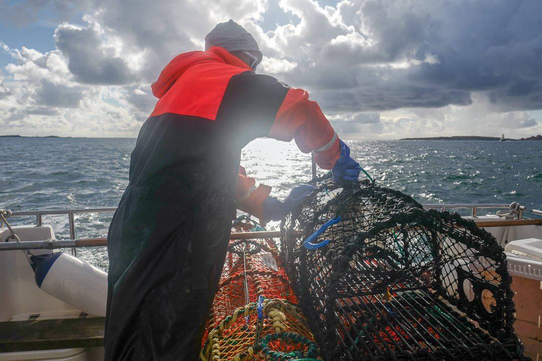 L1550753 1080x720 - På bærekraftig hummerfiske i Sverige